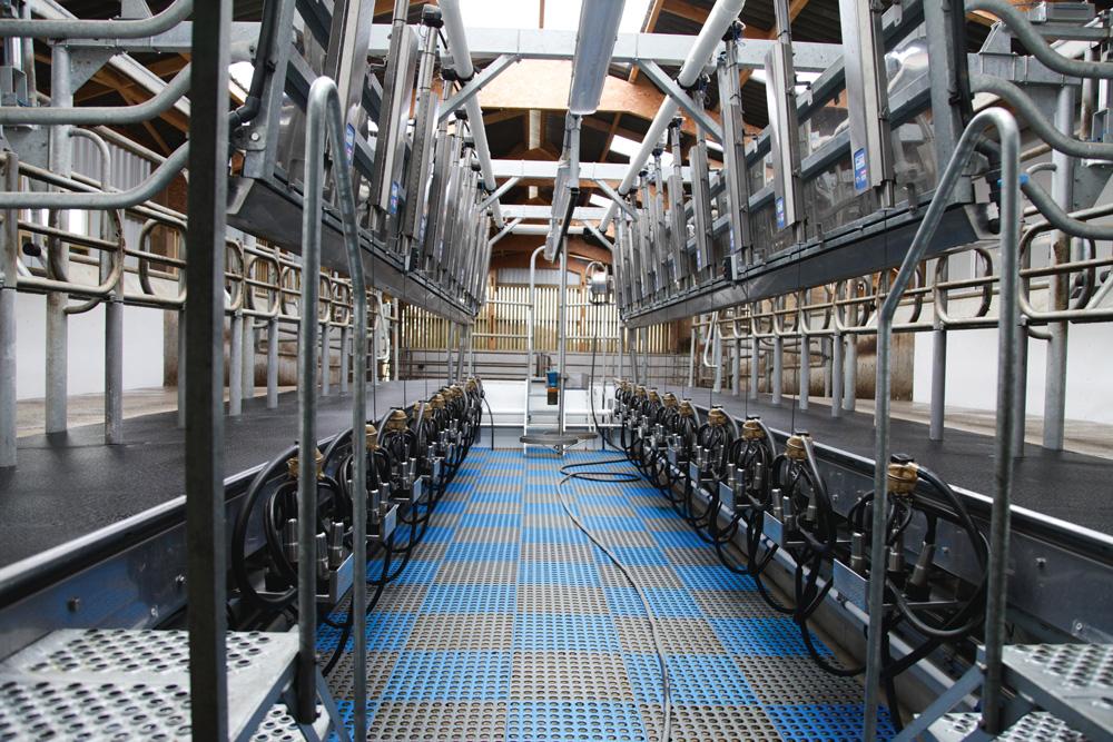 """Photo of Lait : la """"réduction volontaire"""" européenne a impliqué 48288 éleveurs"""