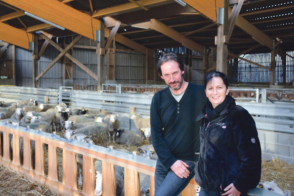 Photo of La rentabilité ovine primée