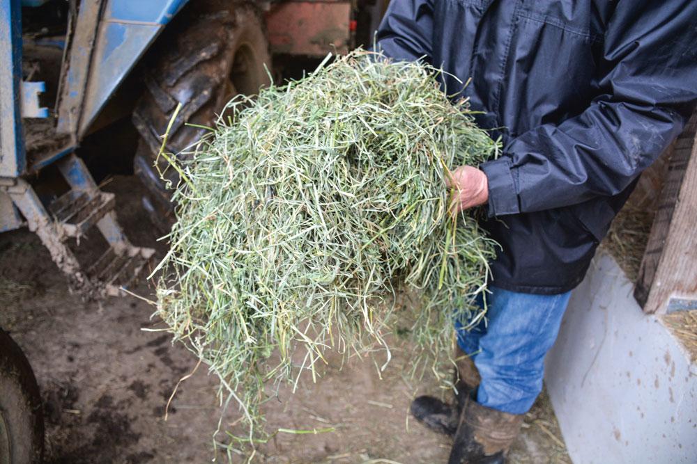 Un foin de meilleure qualit gr ce la d shumidification journal paysan breton - Une botte de foin ...