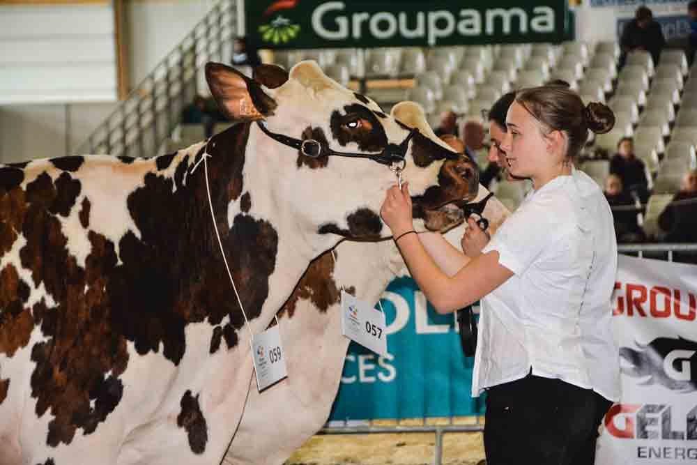 Photo of Le rendez-vous de l'élevage est à Morlaix