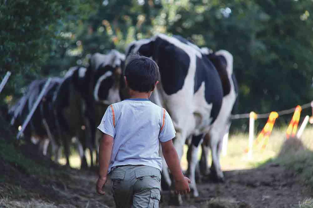 loi-d'avenir-stephane-le-foll-environnement-performance-economique-exploitation-agricole
