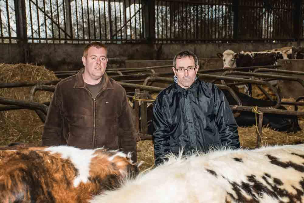 _remy-cottin-yvon-l-anthoen-producteur-lait-goudelin-vache-laitiere