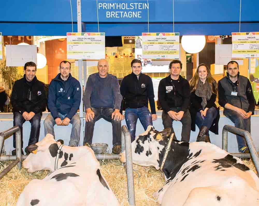 Photo of 200 vaches en lait sur le ring du Régional