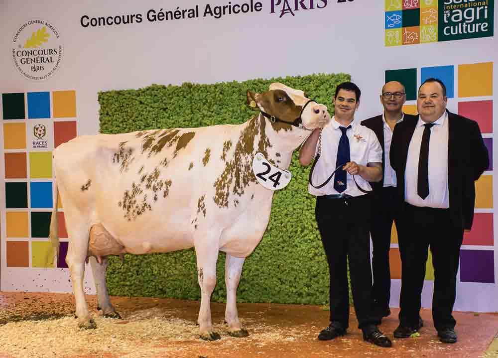 concours-bovin-pie-rouge-salon-agriculture-paris-2016