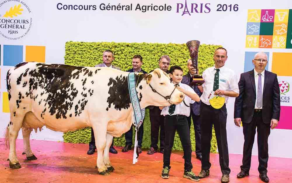 concours-bovin-salon-agriculture-paris-2016-normande-clochette