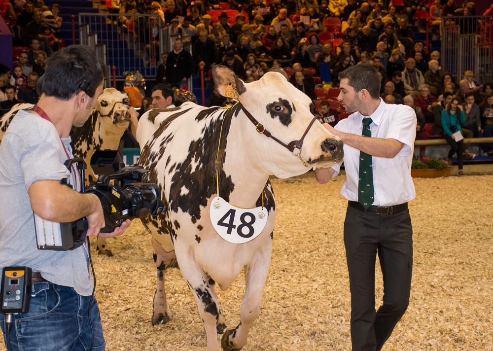 Photo of Concours agricole : les palmarès Bretons