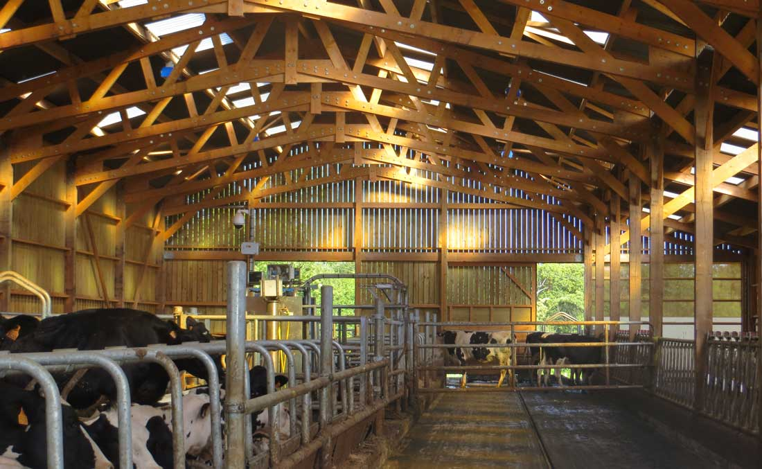 Photo of L'agrandissement des troupeaux laitiers s'accélère