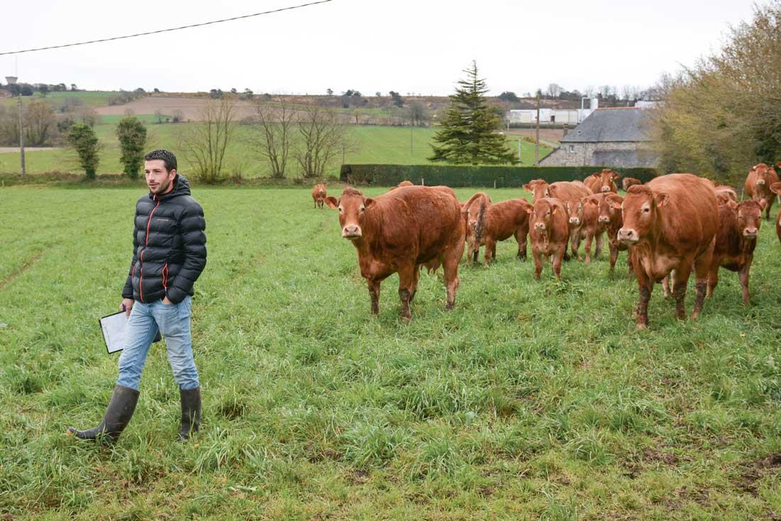 L'assemblée générale du Herd-Book Limousin Bretagne s'est clôturée par la visite de l'élevage de Gwénaël Mordelet à Lanfains (22)