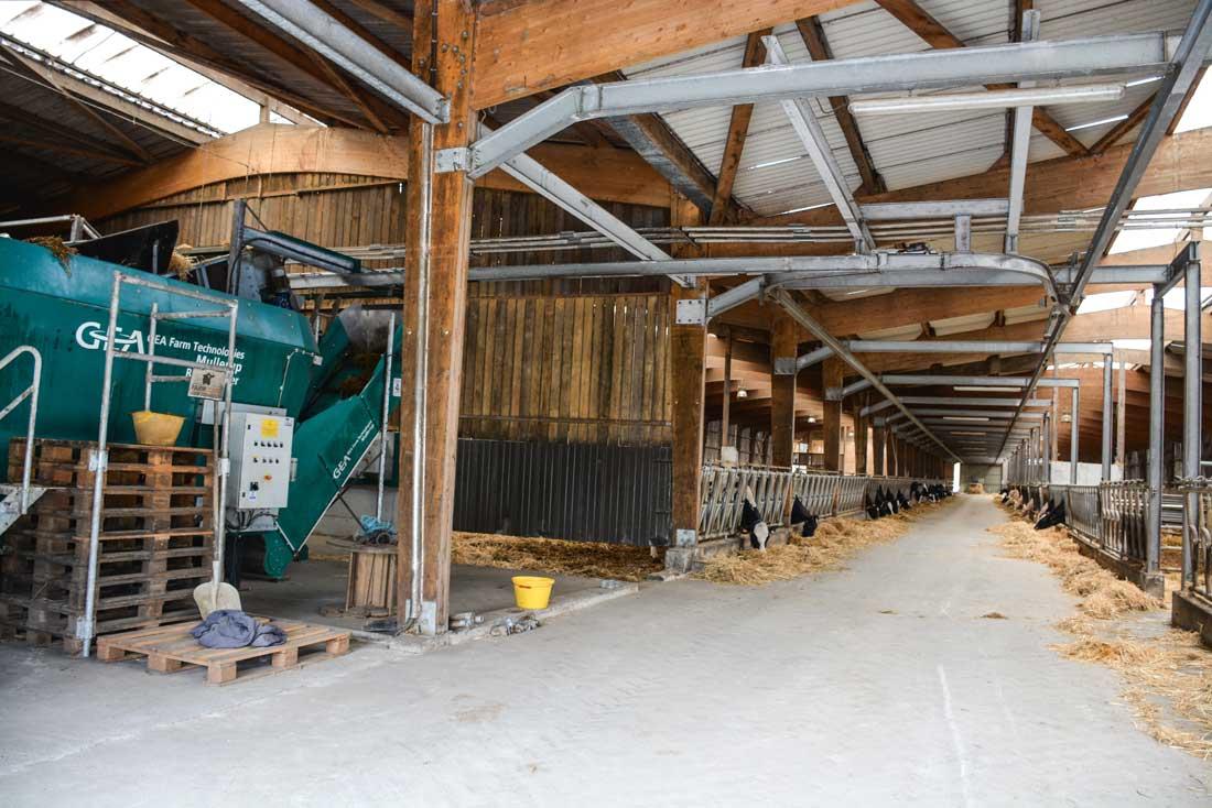 Les 120 m de rails dans le couloir de la stabulation sur lesquels se déplace l'automate.