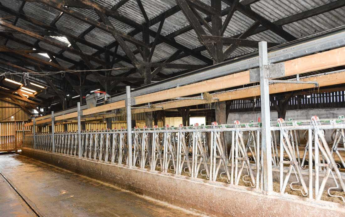 Le tapis mesure 30 m de long et distribue des deux cotés du couloir d'alimentation.