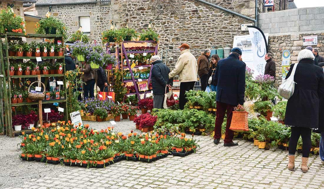 Photo of Andel fête les belles plantes