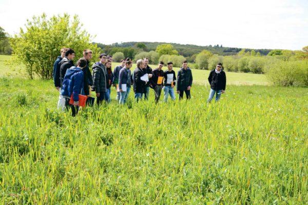 Un groupe d'élèves du lycée agricole de Derval devant le mélange céréalier.
