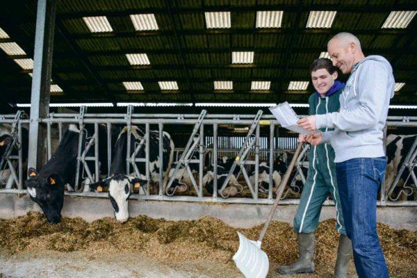 Discussions et échanges autour de la ration des vaches laitières entre Clément Louis, apprenti au CFA de Caulnes, et Ollivier Pian, éleveur et maître d'apprentissage à Yvignac-la-Tour (22).