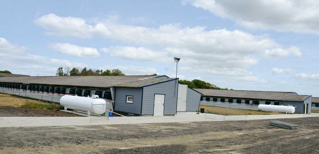 Les 5 poulaillers de 1 200 m2 ont été rénovés à l'identique : passage de la ventilation statique à dynamique, isolation, sol bétonné, changement du matériel d'élevage et bardage des pignons.