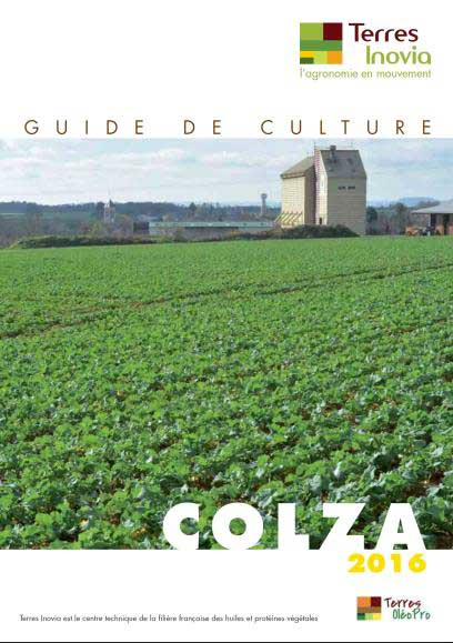 guide-colza-terres-inovia