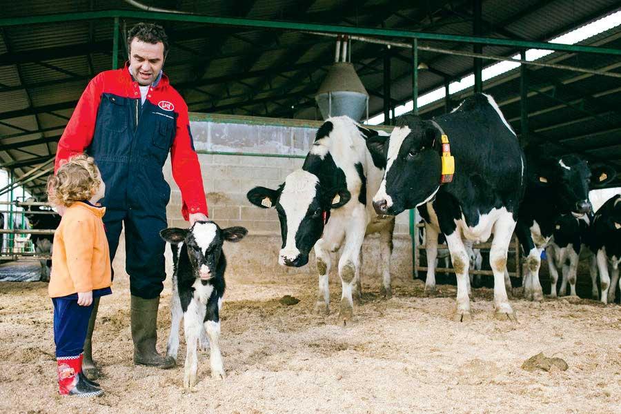 Photo of Produire du lait en Espagne