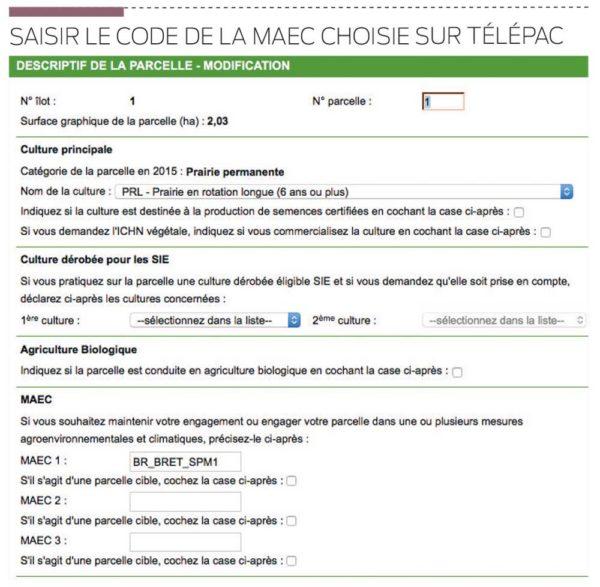 saisie-code-maec