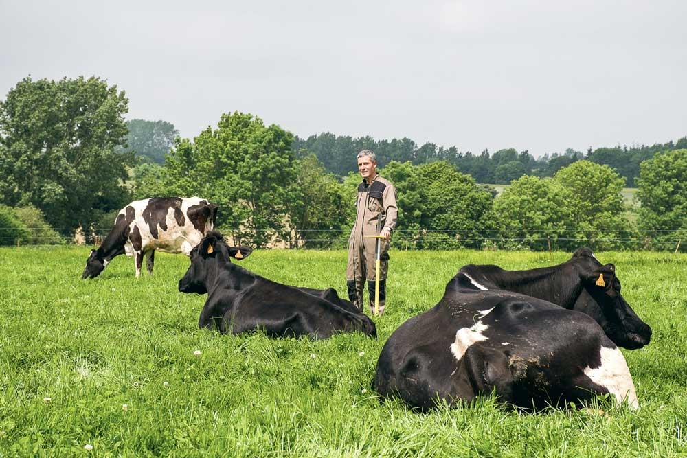Emmanuel Nourry avoue gérer beaucoup mieux ses prairies qui sont désormais plus productives. Au final, en 2015, son troupeau de 40 vaches laitières n'a consommé que 3 t d'aliment.