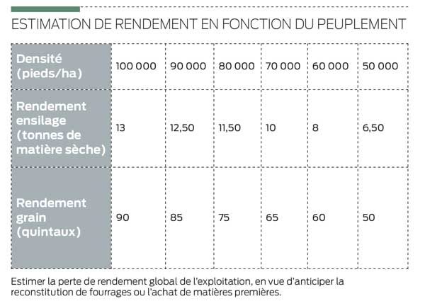 estimation-rendement-mais