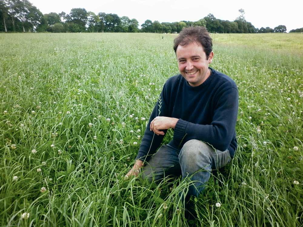 Photo of Une pousse de l'herbe régulière