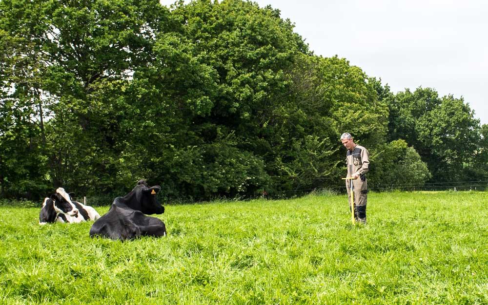 Photo of Les performances élevées passent par un suivi régulier des hauteurs d'herbe