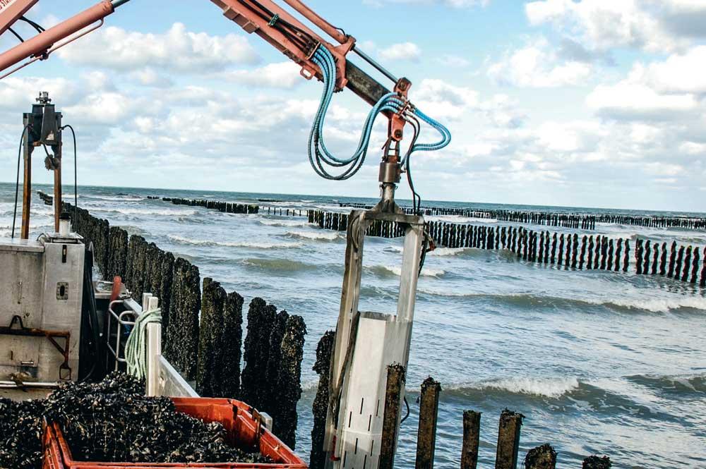 Photo of Les professionnels lancent l'alerte sur la pollution de l'eau