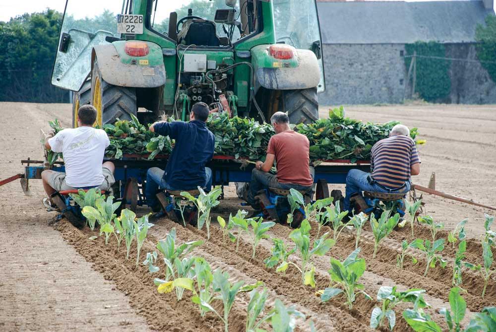 """Photo of Le ministère de l'Agriculture publie une """"calculette"""" de la pénibilité"""