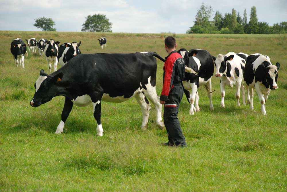 Photo of La Bretagne agricole se rêve un autre avenir