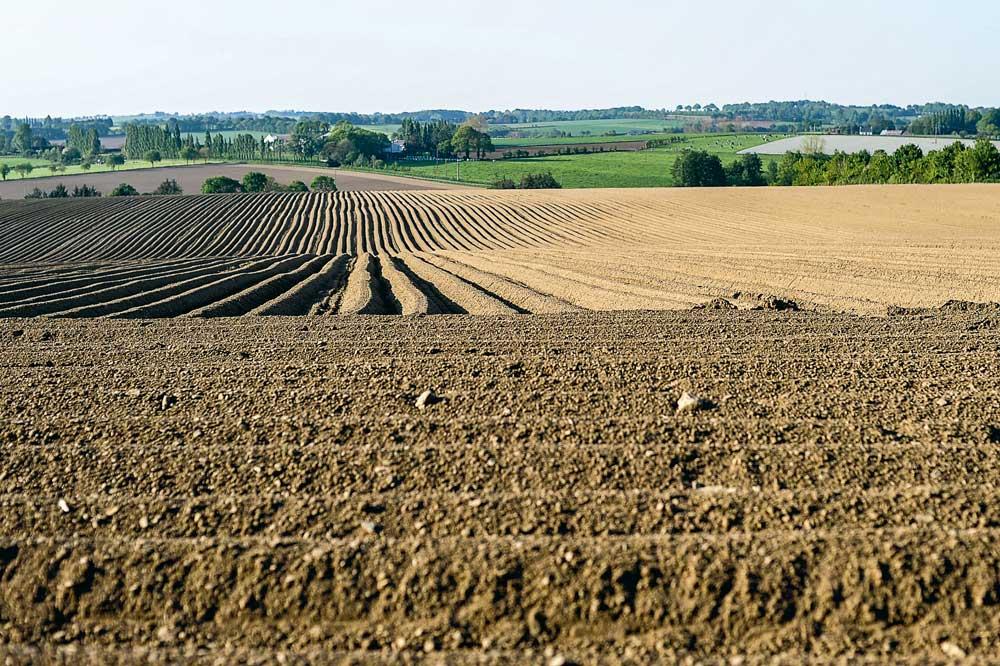 Photo of Foncier agricole et contrôle régional des structures