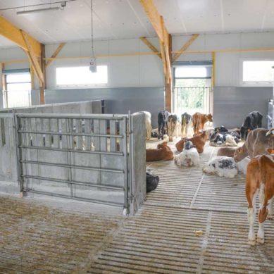Distributeur automatique de lait et souplesse de travail
