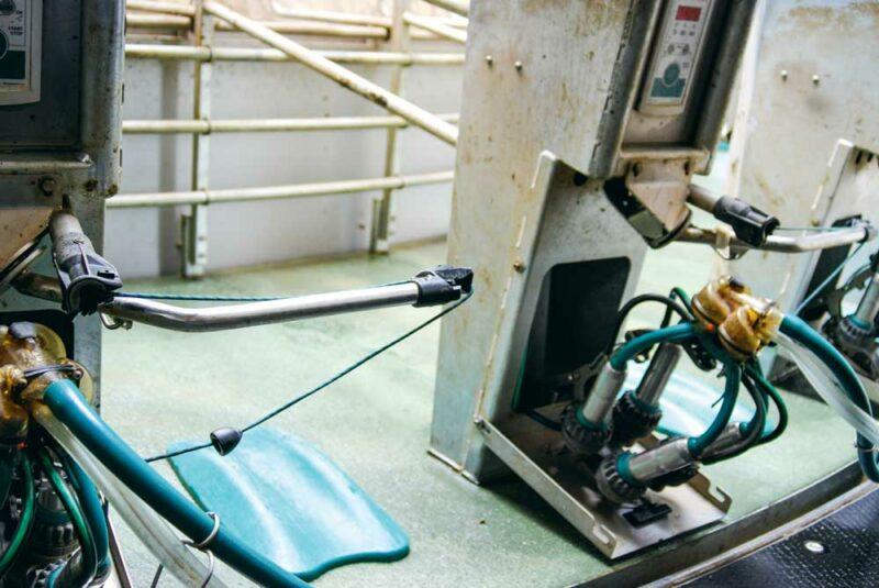 A l'agrandissement du troupeau en 2014, un nouveau bloc traite a été construit. Un roto 36 postes GEA a été préféré à des robots de traite pour « conserver l'aspect évolutif » du système. Une dalle se réhausse selon la taille du trayeur. Un bras de guidage permet de gagner en ergonomie au moment de la pose des manchons. L'aspiration ne s'active qu'une fois les faisceaux trayeurs sur le pis. Le décrochage automatique s'effectue en souplesse.