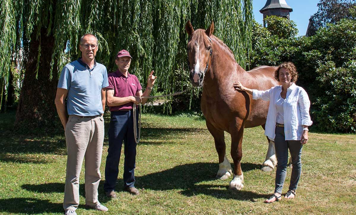 td_lamballe_cheval-2