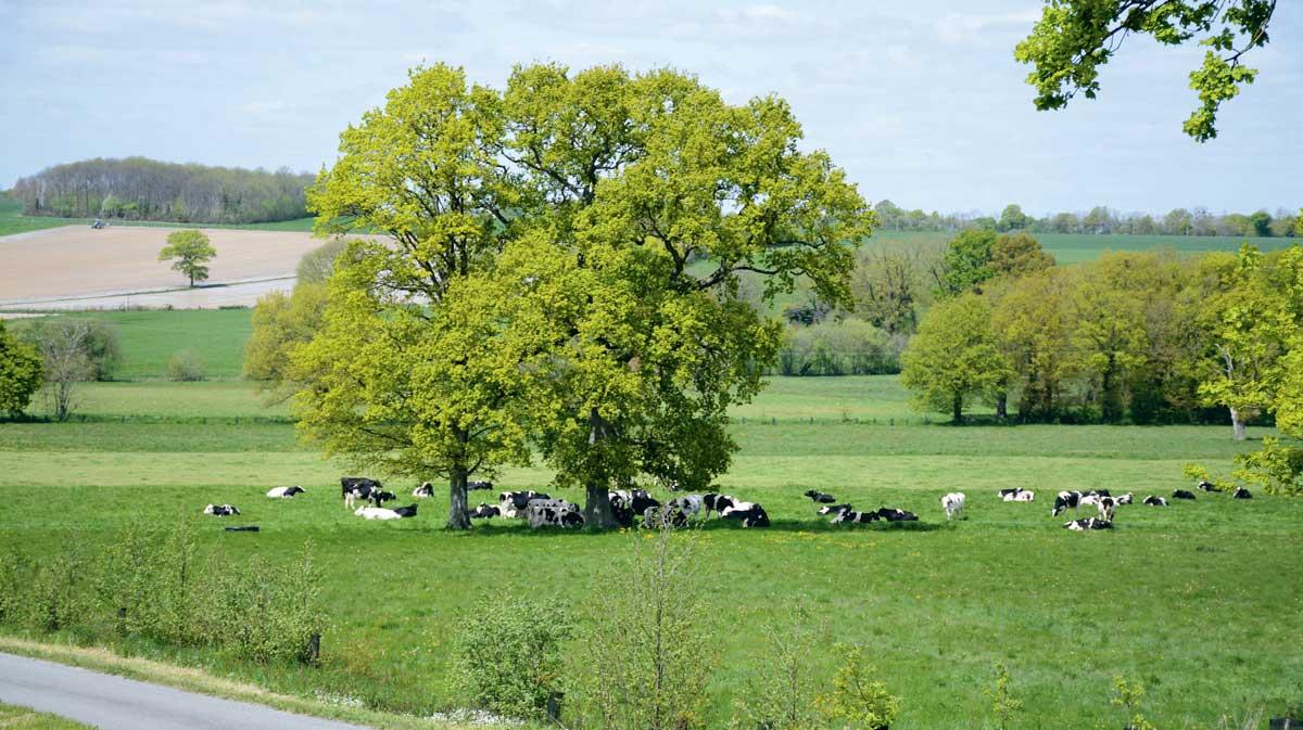 Photo of Des agriculteurs agissent pour le climat