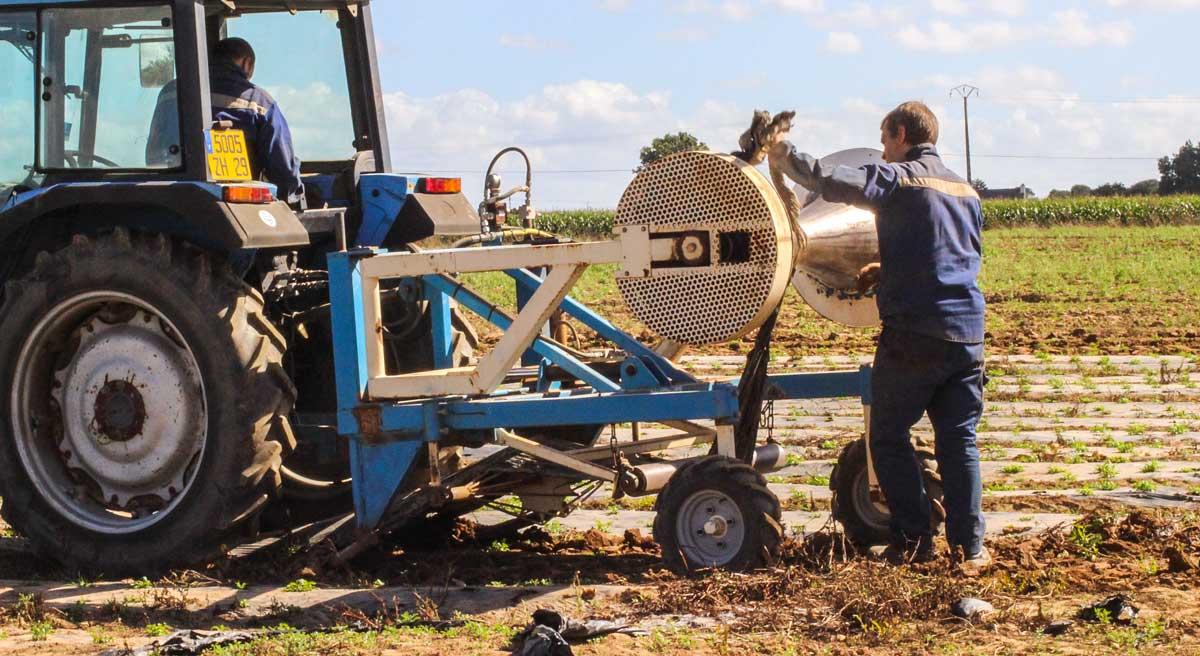 chalote les l gumiers collectent proprement leurs paillages journal paysan breton. Black Bedroom Furniture Sets. Home Design Ideas