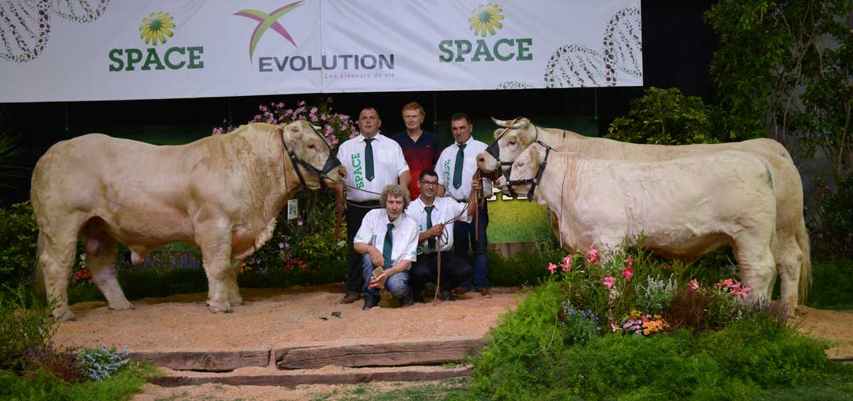Photo of SPACE 2016 : Jolicœur au sommet des Charolais