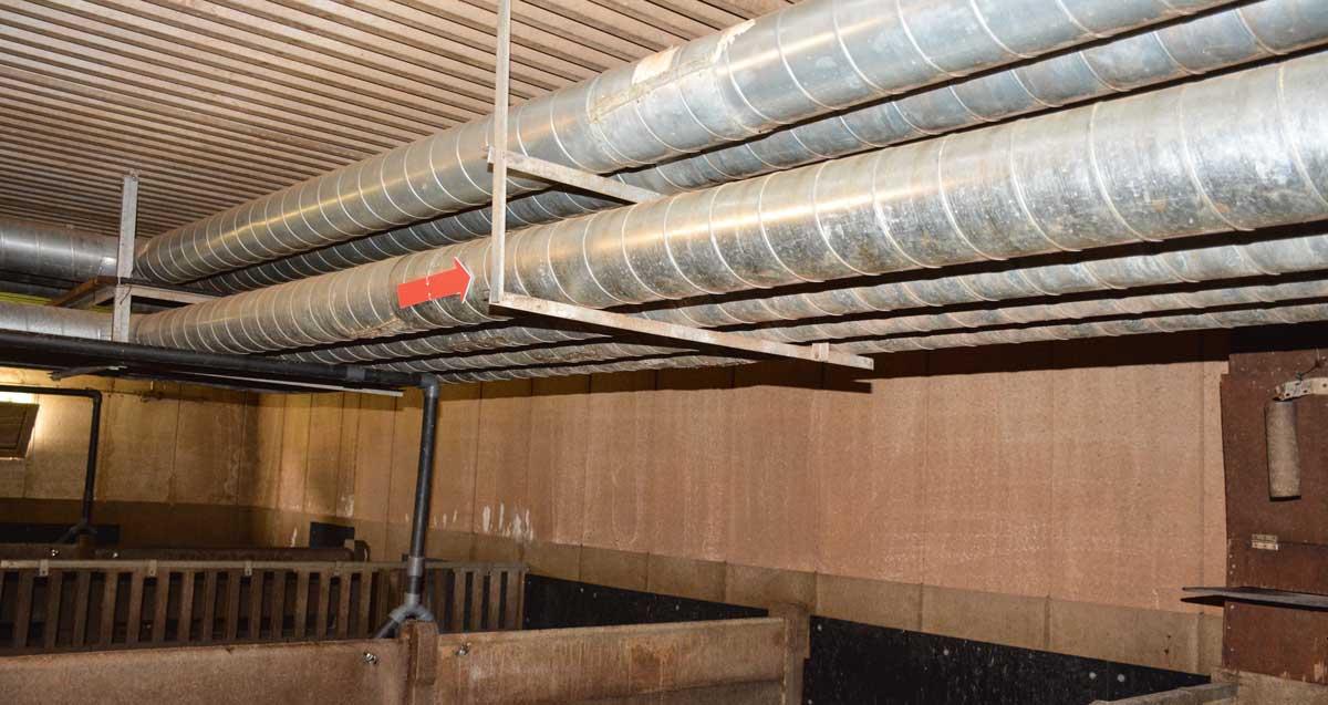 echangeur air air maison Les tubes installés dans les salles du0027engraissement.