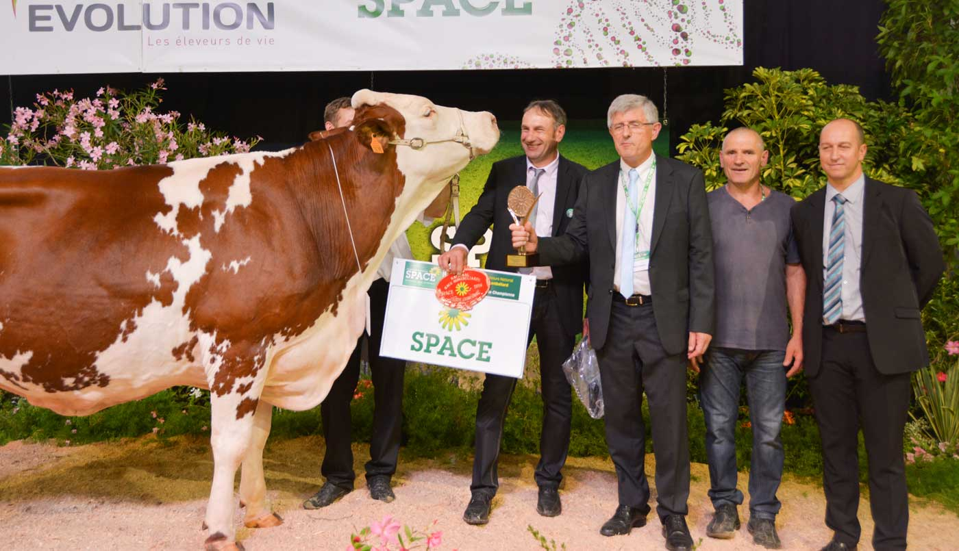 Photo of SPACE 2016 : Beauté sublime le concours montbéliarde
