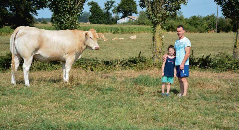 Philippe Tual et son fils, Kévin, en compagnie d'Ibiza, la génisse que l'élevage va amener au Space.
