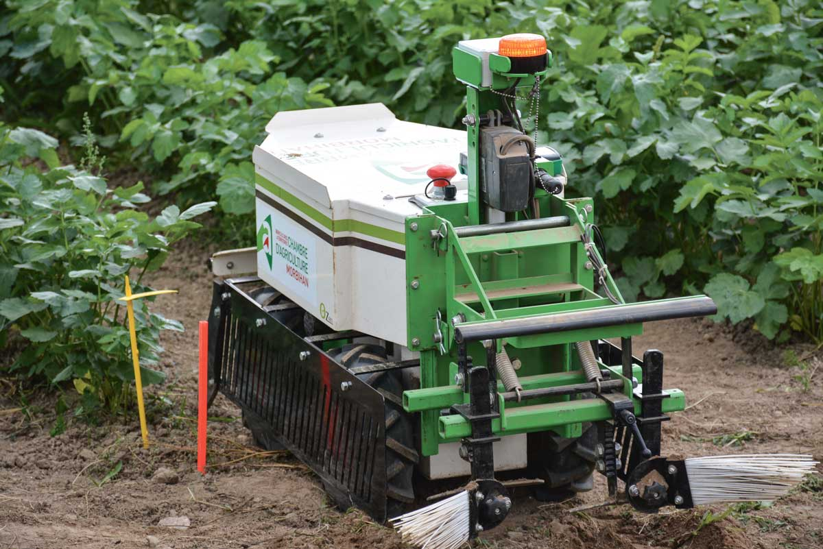 Photo of En agriculture, les robots bouillent d'impatience