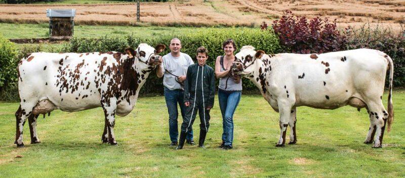 Gagnante et Image, présélectionnées pour le Space. Leurs propriétaires Emmanuel et Isabelle Coué sont accompagnés de Mathieu, 14 ans, originaire de la région parisienne, qui aime passer ses vacances à la ferme.