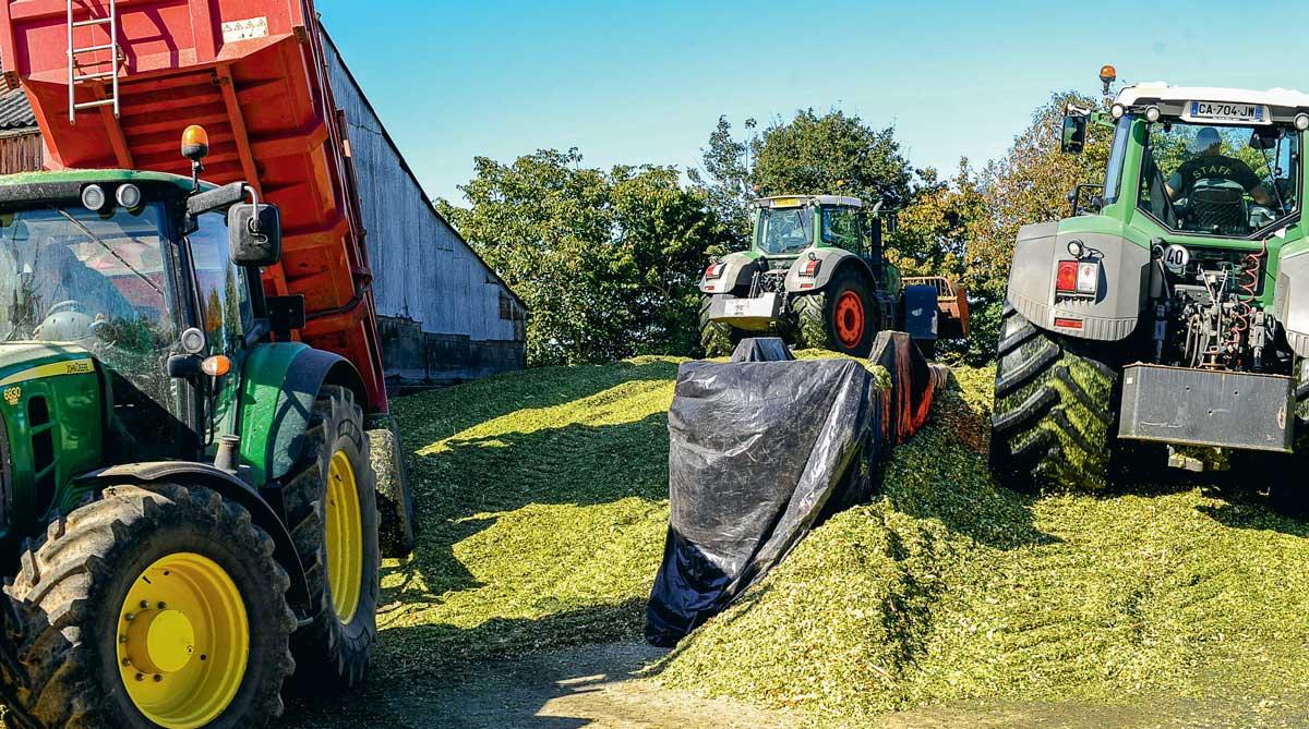 Photo of Après fermeture du silo de maïs, respectez un délai de 3 semaines