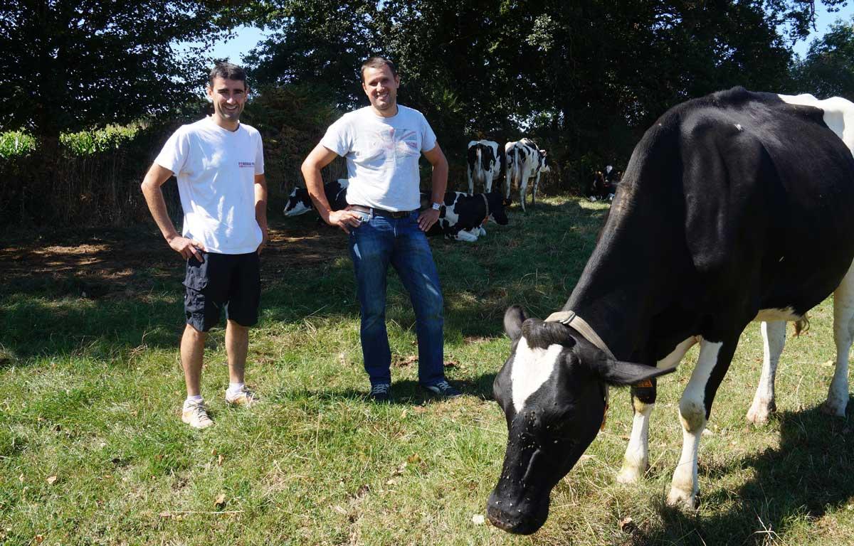 Photo of Du ring à l'élevage