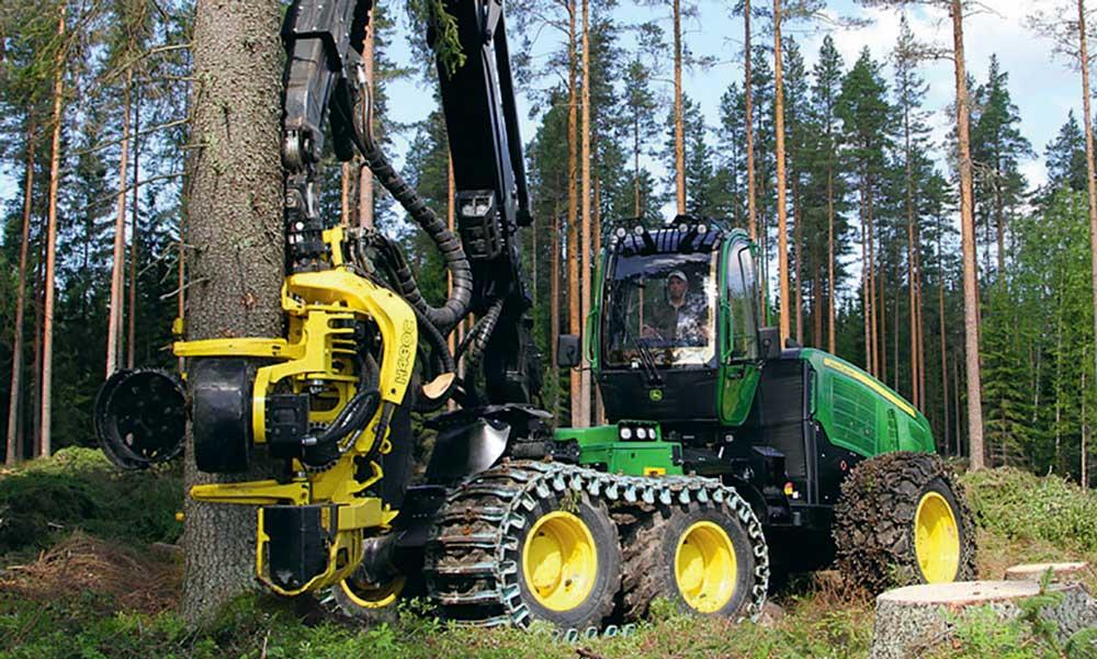 Photo of La forêt recherche ses entrepreneurs