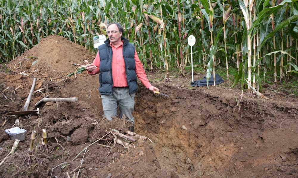 Daniel Hanocq, conseiller agronome à la Chambre d'agriculture, a commenté le profil de la parcelle d'essai. « Les racines vont chercher à boire en profondeur. Ici, le sol le permet ».