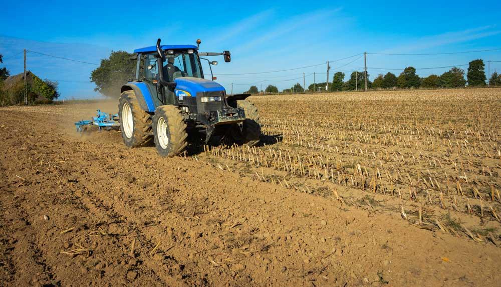 Photo of Céréales : le faux semis fait défaut