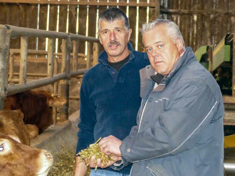 Jean-Luc Enez, de l'EARL des Peupliers à Pleyber-Christ (à gauche), échange avec Jean-Paul Kergoat, son technicien cultures sur la qualité de l'ensilage fraîchement récolté, idéal pour les broutards.
