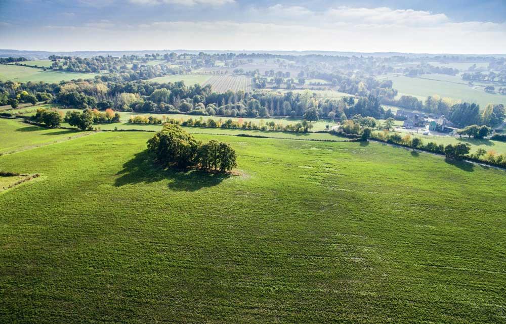 Photo of La perte de terre chute avec le semis direct