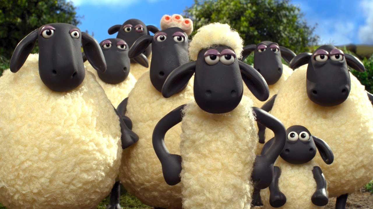 Photo of La totalité du paiement de l'aide ovine se fait encore attendre déplore la FNO