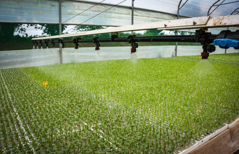 La rampe facilite et automatise le travail, que ce soit pour l'irrigation, les traitements ou pour la fertilisation.