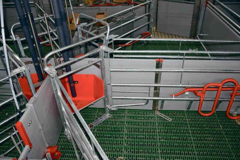 Les cases des maternités (36 places) sont disposées en croix, les quatre auges des quatre cages sont dans le même coin. L'alimentation est en soupe. Certaines auges sont équipées de sonde de niveau pour évaluer leur intérêt (éviter le gaspillage et la vidange pour les truies qui consomment moins bien). Dans le cas où la réglementation évolue, les côtés de la cage peuvent être ouverts au maximum, comme sur la photo, pour libérer la truie.